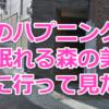 【口コミ】渋谷のハプニングバー「眠れる森の美女」でスワッピング!